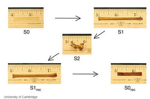 S0, S1というあらかじめプログラムされた形状に戻るポリマーの研究(http://spectrum.ieee.org/より)