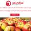 SRIから、リンゴ収穫ロボット会社がスピンアウト