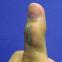 150%伸びても機能する、極小の銀ナノワイヤー・センサー
