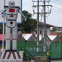 キンシャサの交通は、ロボットが整理