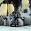 ペンギンを観察するペンギン・ロボット